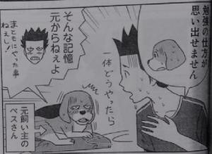 いぬライク12-1
