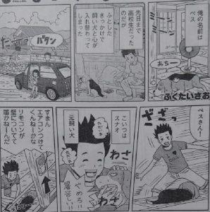 いぬライク13-1