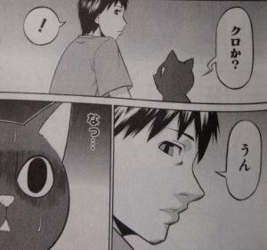 黒猫とクロの非凡1